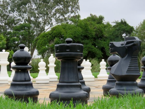 Giant chess close up Stonehill Di Brown