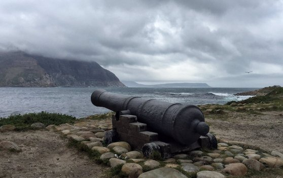 canon at Hout Bay, Di Brown
