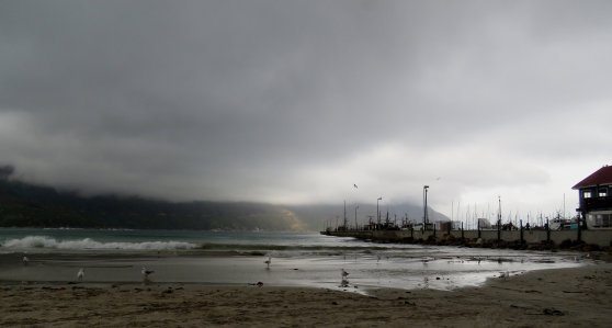 Hout bay beach, Di Brown