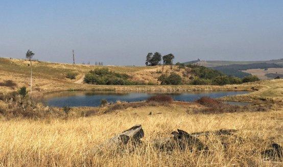 brahman-hills-dams-di-brown